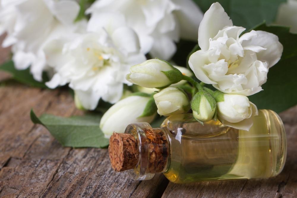 15 regali originali per chi ama i fiori