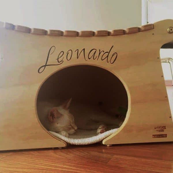 casetta legno per gatti