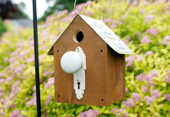 Casetta in legno per uccellini