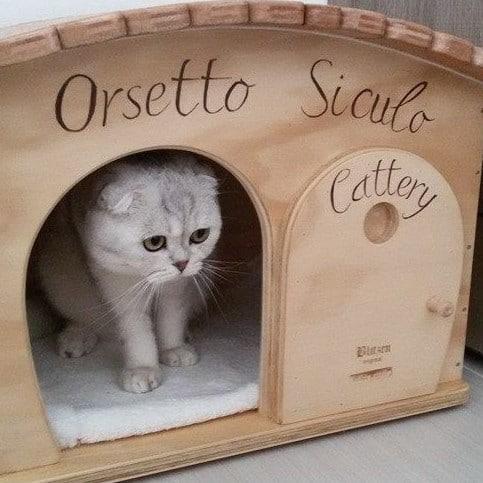 Cuccia per gatto in legno