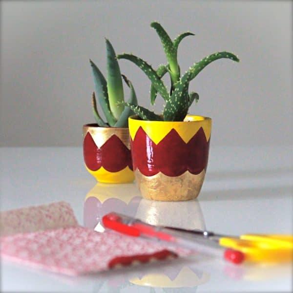 vasetto-ceramica-piante-grasse