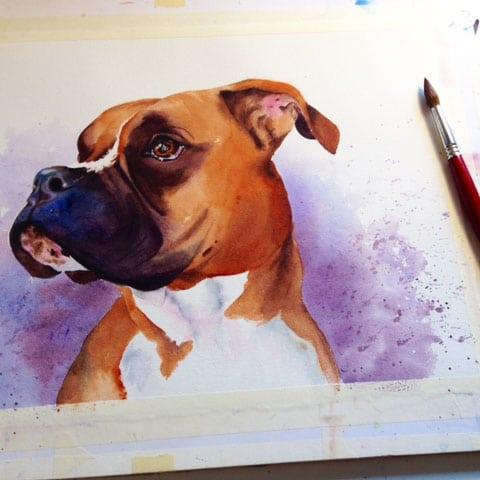 ritratto-cane-acquerello