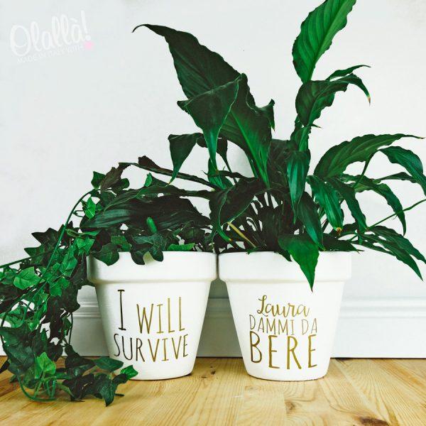 vasi-pianta-personalizzati