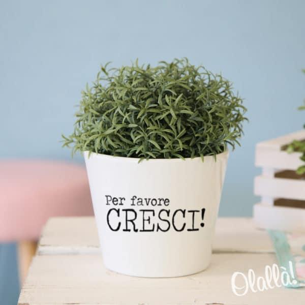vaso-personalizzato-regalo-compleanno-cresci