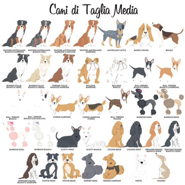 Legenda-cani-taglia-media-ritratti-