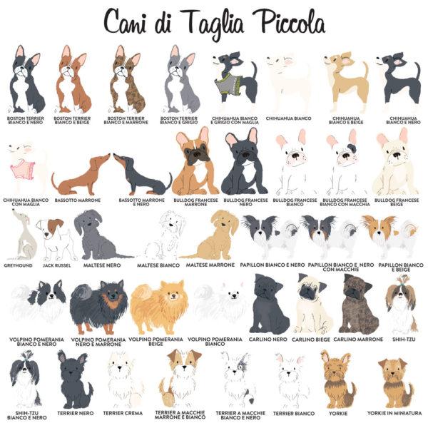 Legenda-cani-taglia-piccola-ritratti-